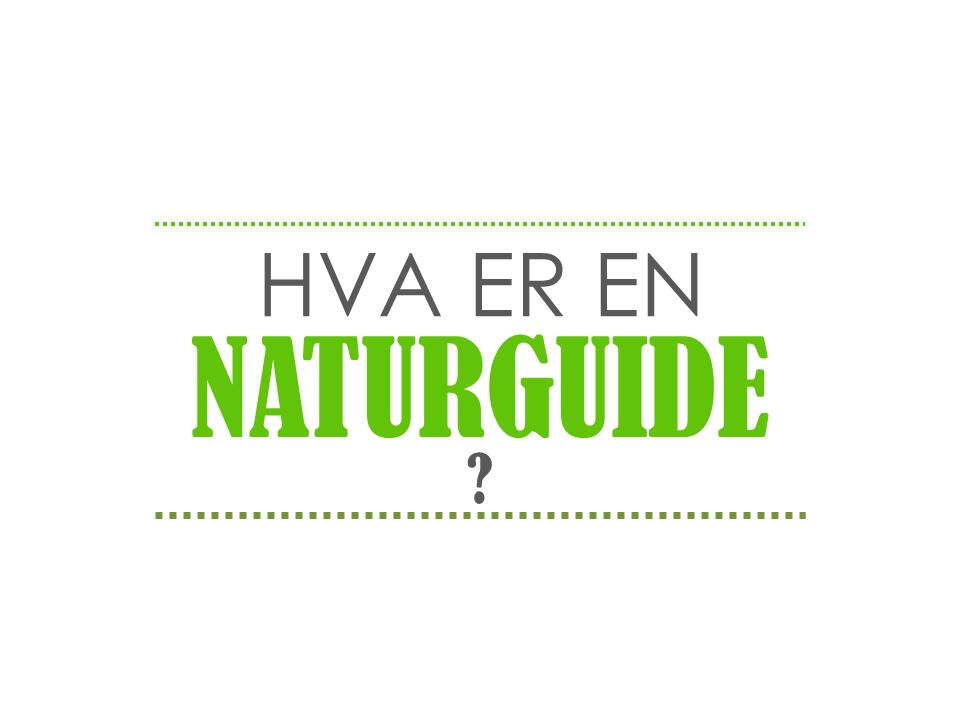 Hva er en naturguide